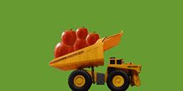 Jeux pour tout petits: Les pommes! Les enfants jouent, accompagnés par les mamans et les papás.