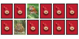 Jeux de mémoire pour les enfants: Les animaux de la jungle!